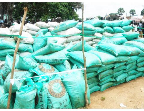 Adamawa govt to revamp abandoned fertilizer plant